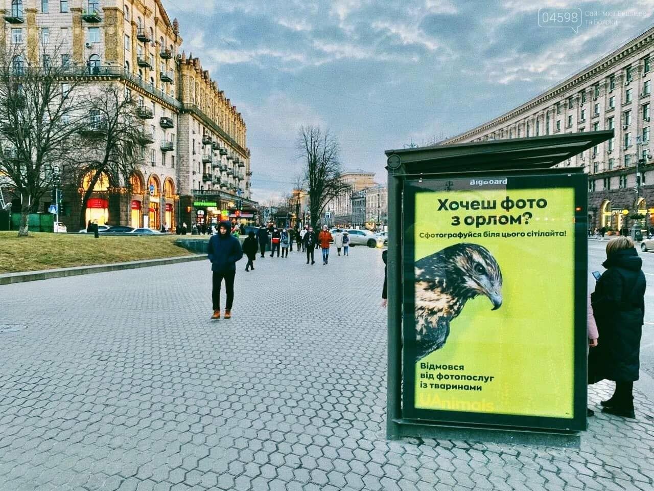 Фото з мавпочкою: у столиці запустили флешмоб, фото-2